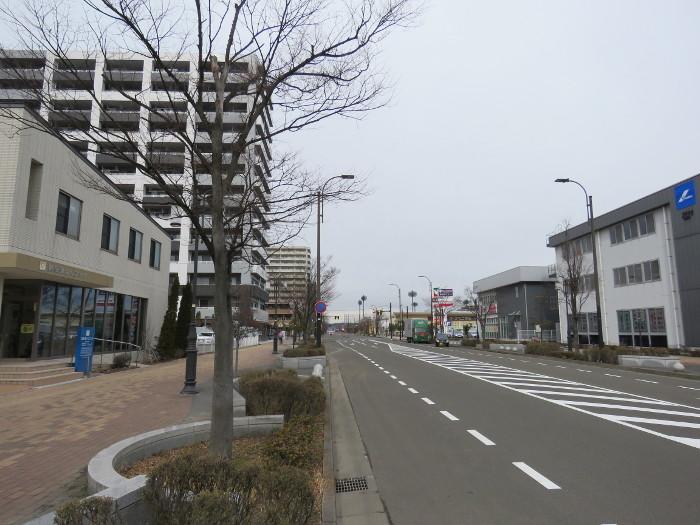 小鶴新田駅前の新田東の街並み