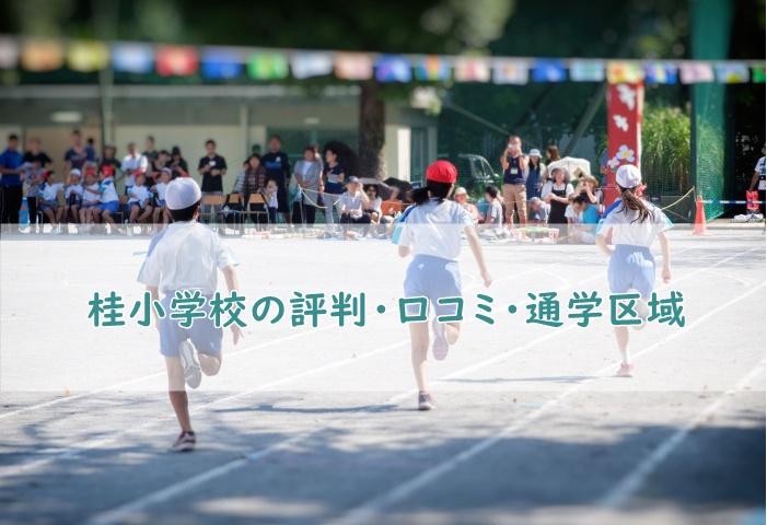 桂小学校の評判・口コミ、通学区域